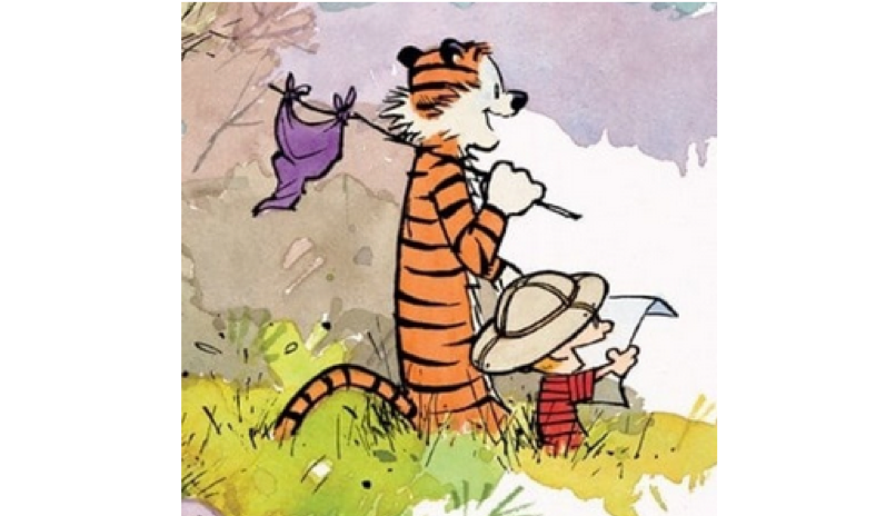 calvin and hobbes featured