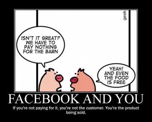 facebook pigs